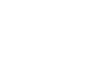 Expert Pension Claims