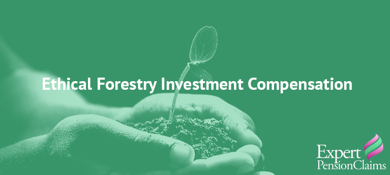 Ethical Forestry Investment Compensation